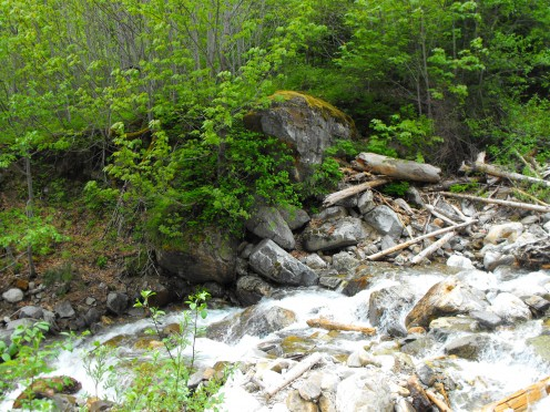 Creek Trail, glacier water, flowing to the lower lakes and Skagit River.