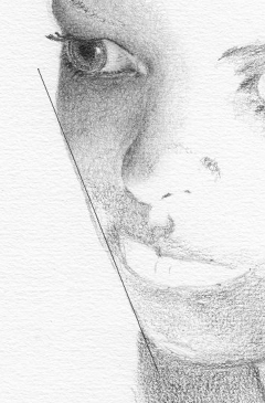 The curves found on a face are often closer to a straight line than we realise at first sight.