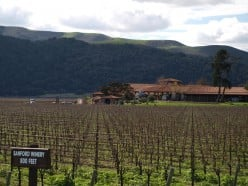 Santa Barbara Vineyard