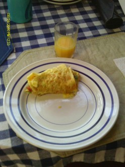Omelet with Avocado, Bacon and Cheese.