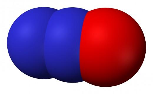 Nitrous Oxide Model