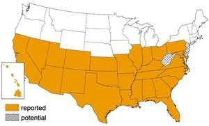 Where Kissing Bugs Are Known To Exist In The United States In This Map. As You Can See Kissing Bugs Occur Over The Bottom Two Thirds Of The USA