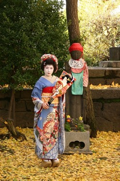 Top 20 Places to Visit and Things to Do in Japan
