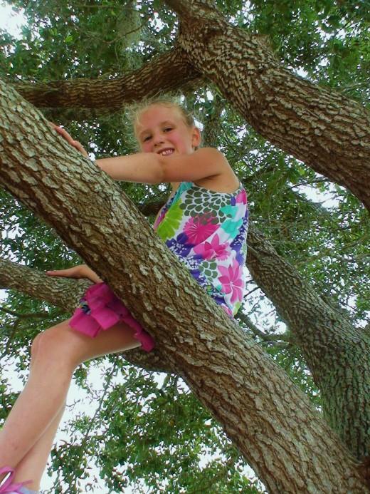 Climb trees.