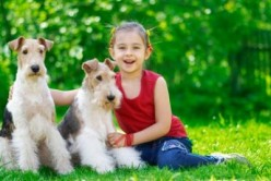 Best Small Dog for Kids with Allergies