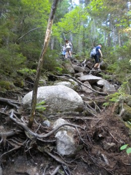 Steep part of Bemis Brook Trail