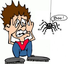 Arachnophobia: An Irrational Fear or an Age-old Tradition?