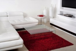 Red Area Rug in a White Living Room