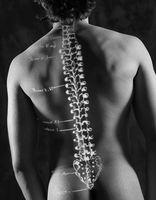 Do you know that you CAN heal your own back? Keep reading and find out how.