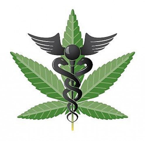 Organizations such as the American College of Physicians have come out in support of medical marijuana while the prestigious American Medical Association has called for a review of the potential benefits cannabis offers.