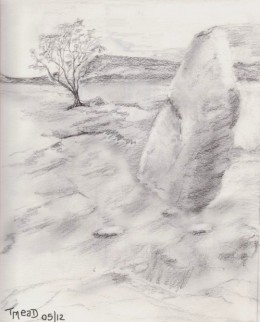 The stone circle, with lonesome tree