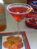 Cranberry Mandarin Martini