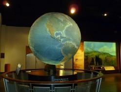 Global Living Organism