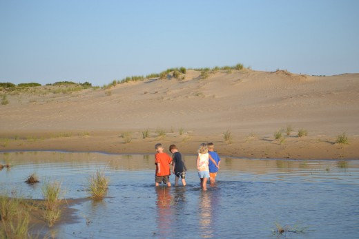 The kids always find water to play in. Exploring the dunes at Jockey's Ridge State Park was no exception