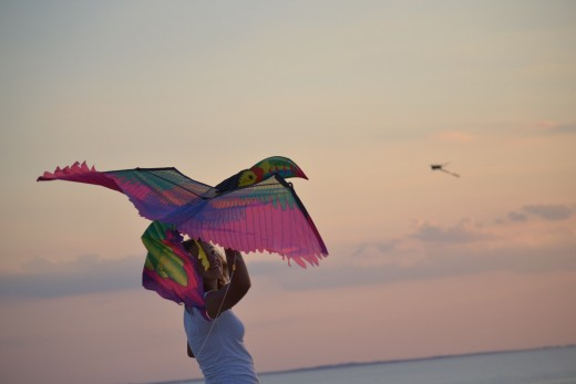 Kite flying in the Outer Banks at  Jockey's Ridge State Park