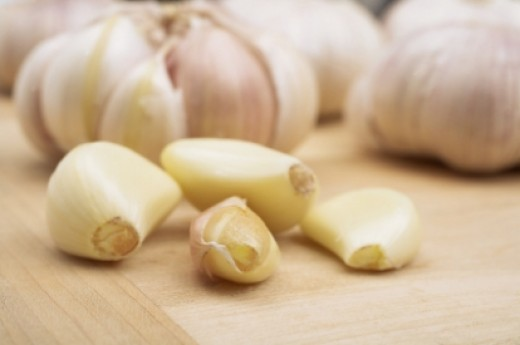Garlic is not toxic to dogs.