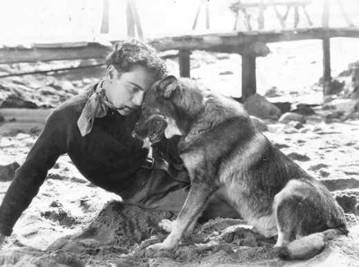 1924: Rin Tin Tin, the Warner dog star, comforting his master, William Collier.