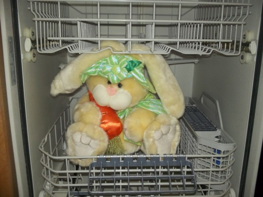 Stuffed animals and live animals (for that matter, dead animals) should all stay out of the dishwasher.