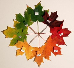 Fun Family Activities for Each Season of the Year