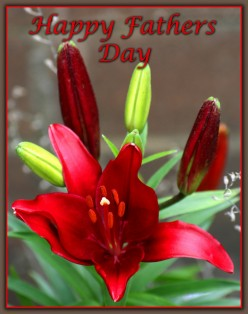 What Day Is Fathers Day 2015 - 21 June 2015 - And Later Dates - Fathers Day Gift Ideas