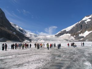 The Athabasca Glacier is in Banff National Park.  Sightseeing tours out on to the glacier are available.