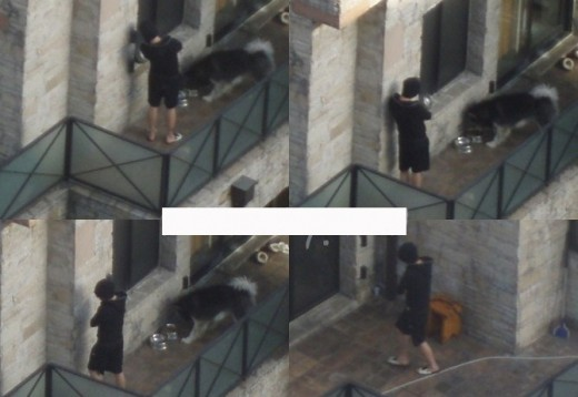 Sasaeng Fans taking photos of Yoochun (JYJ) From Above while he is at home