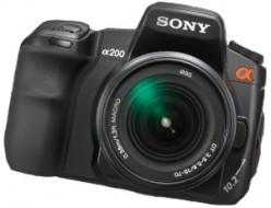 Digital Cameras Review- Canon EOS Versus Nikon and Sony