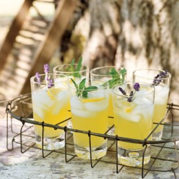 A beautiful fragrant fruity alcoholic drink