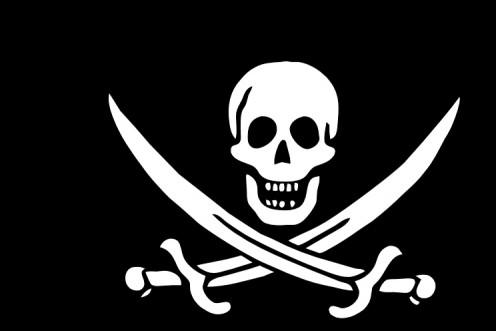 Pass me the grog ye scurvy dog!