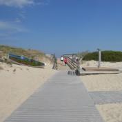 Beachlife profile image