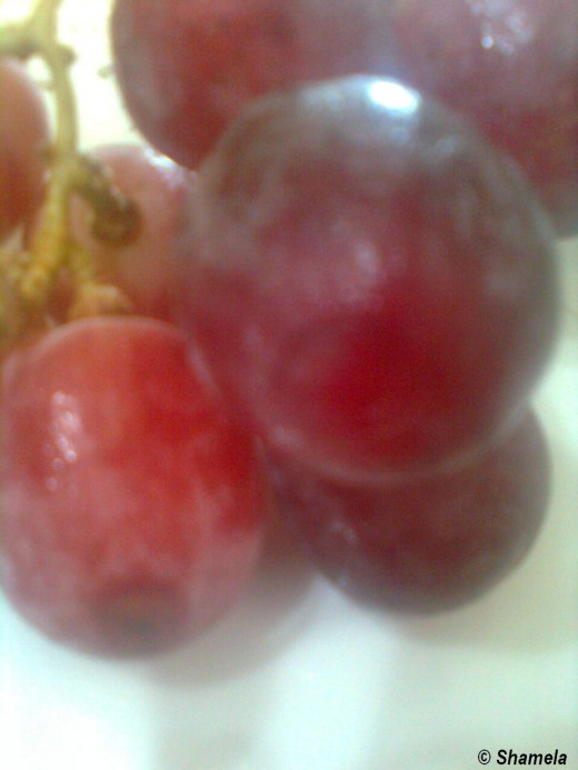 My photo of Grape fruits.