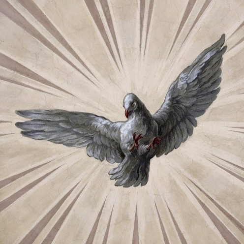 THE HOLY SPIRIT depicted in scriptures as a dove.