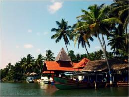The resorts at the backwaters