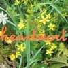 heartwort profile image