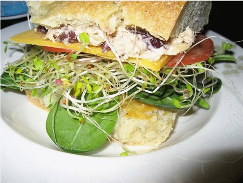 Sprouts and micro-greens together make a great sandwich. yum!