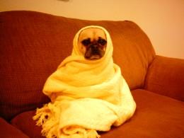 Keep 'em warm after a bath