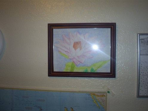 I drew this picture of a Hawaiian water lilly and put it in a cute frame.  Drawing your own pictures and putting these in a frame is a nice gift idea, and show much more creativity than most gifts in the store.