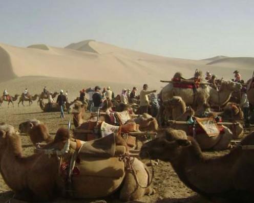 Caravans on Silk Road, present time