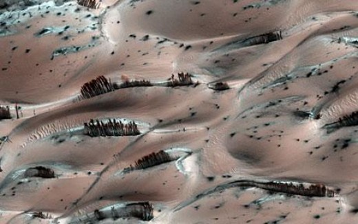 This NASA image from 2010 piqued interest in the idea of trees being native to Mars.