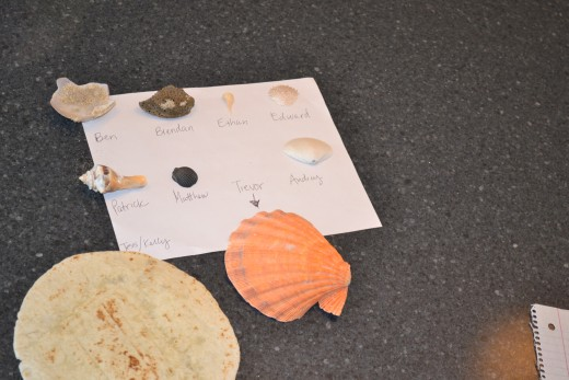 Final entries into the best shell category