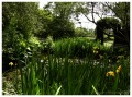 Gardens of England - King's Arms Garden - Ampthill, Bedfordshire