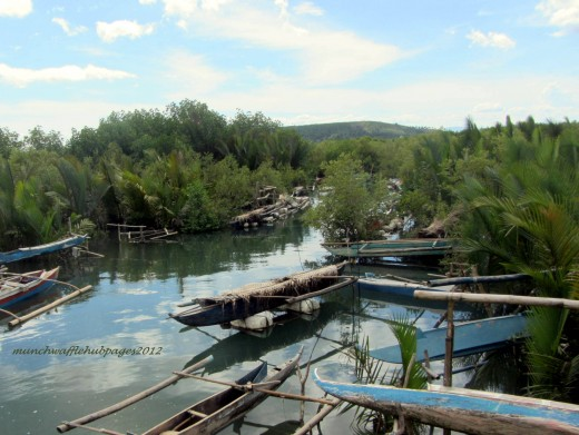 While on the bus, we passed by this beautiful scenery of outrigger boats by the mangroves