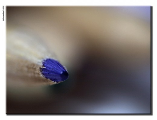 Tip of a colored pencil