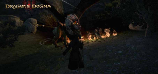 Dragon's Dogma Beating the Griffin for the first time in the Griffin's Bane Quest