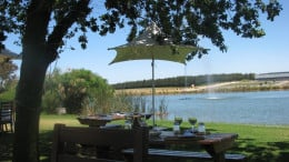 A lazy Sunday afternoon lunch at one of the many wine farms in the area
