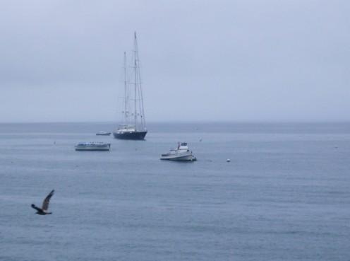 Sailing in the Santa Monica Bay, CA.