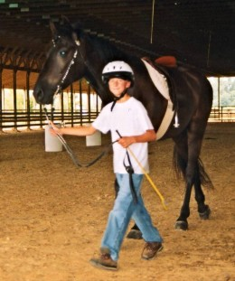 This horse is walking with its handler in the correct position - throatlatch even with the young man's shoulder.