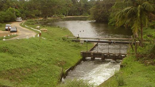 D2 Canal bathing spot.