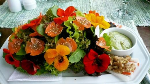 A colorful plate showing a Nasturtium salad
