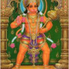 Murthy Vmtk profile image